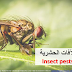 Common plant insect pests (Arabic)