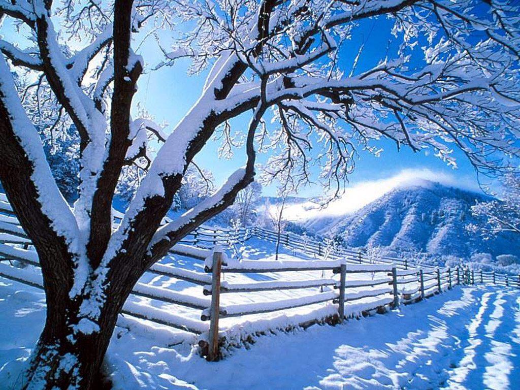 http://2.bp.blogspot.com/-_ApMwjMBK7M/TihOiDoqFXI/AAAAAAAAIKQ/QaF8G2K6D4A/s1600/winter+nature+wallpaper+australia.jpg