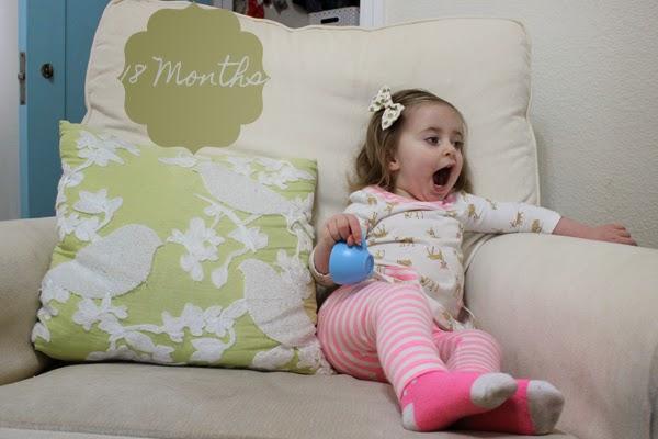 http://meetthegs.blogspot.com/2015/01/lilly-anne-18-months.html