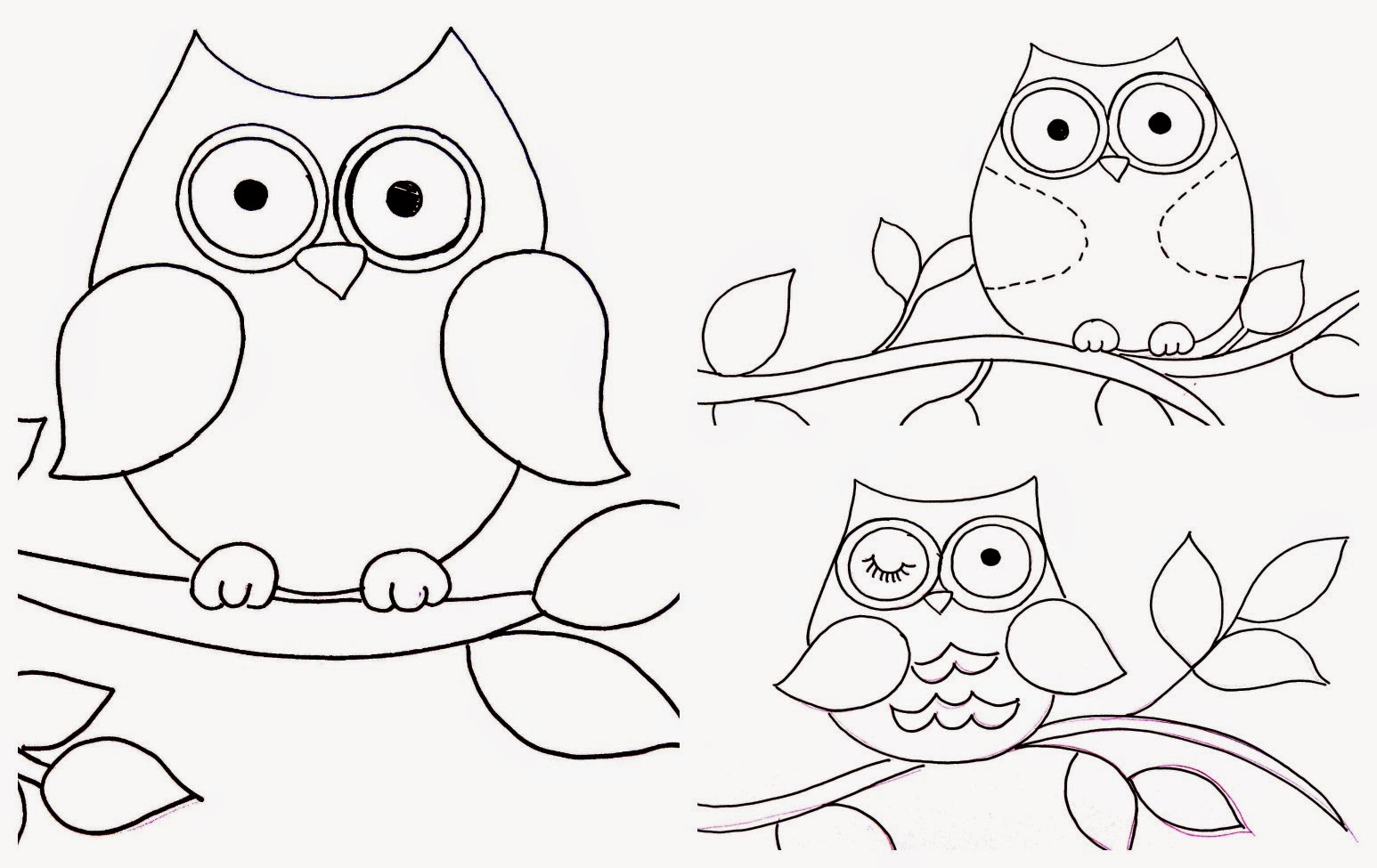 Coloring Pages Baby Owls