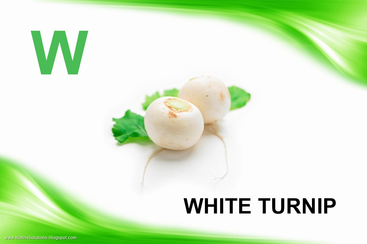 is for White Turnip