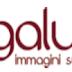 AGENDA BRASIL - dal 30 ottobre al 6 novembre 2015 a Milano