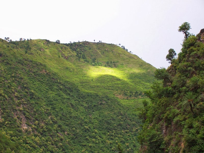 Tourist Attractions in Bhowali | Places to Visit in Bhowali