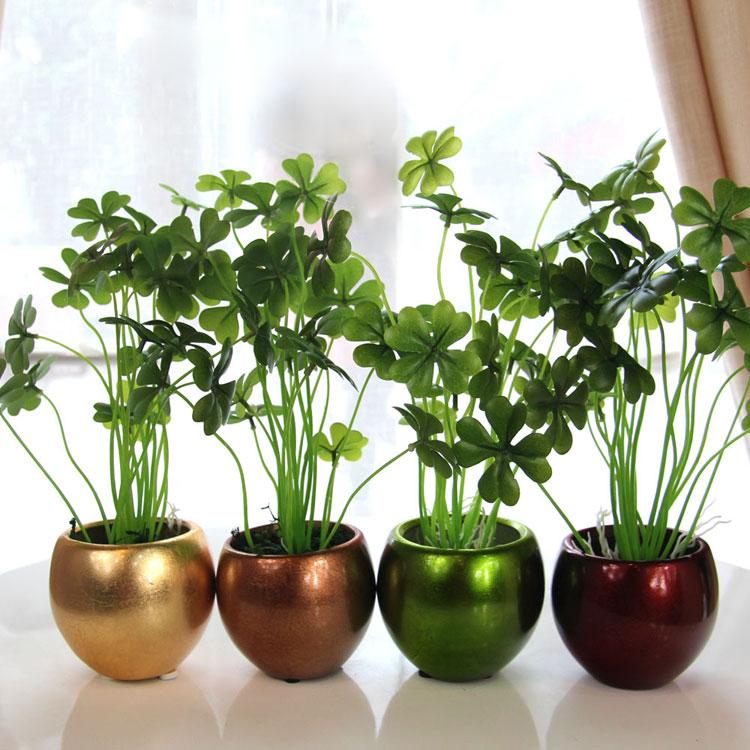 6 plantas de interior que te protegen del mon xido de for Interior design plants inside house