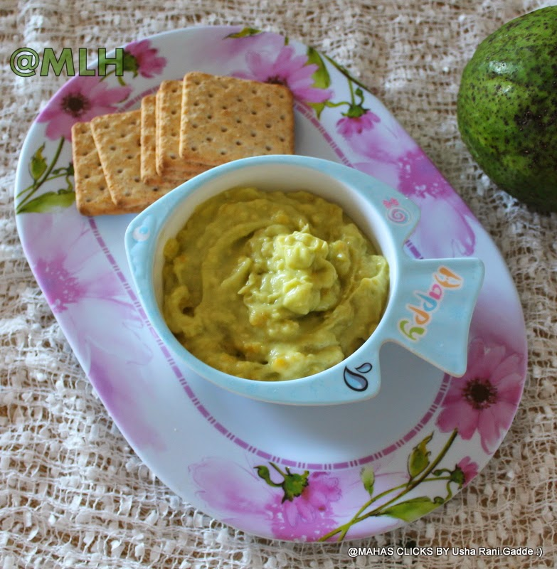... avocado sauce avocado dip avocado bar avocado honey yogurt avocado dip
