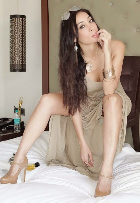 Sofia Hayat Latest Hot Photos