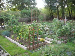 Vert Naturellement Conception De Jardin Et Potager Naturel