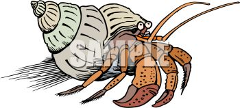 Happy Hermit Crab Cartoon Stock Vector - Image: 55537235