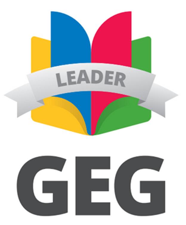 Лідер GEG Ukraine