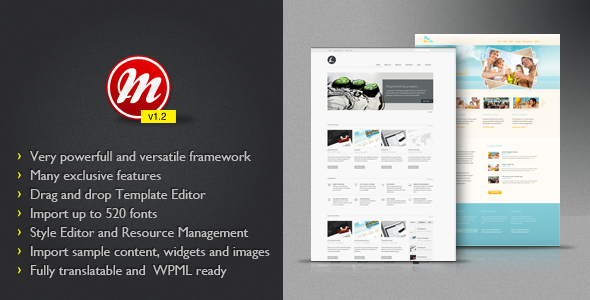 Image for MultiToool Theme FrameWork by ThemeForest