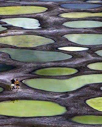 Spotted Lake (Khiluk) British Columbia