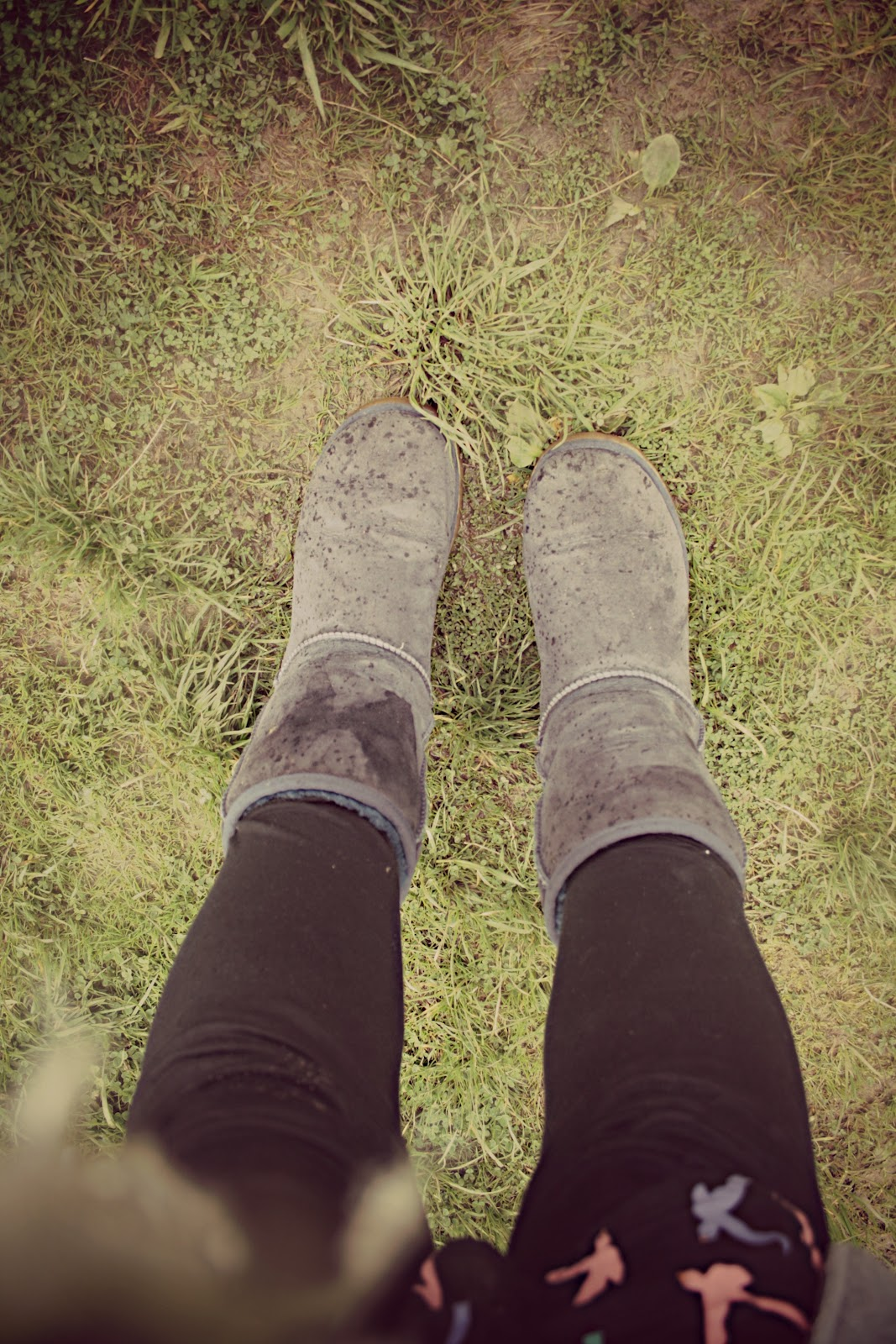 will ugg boots get ruined in the rain