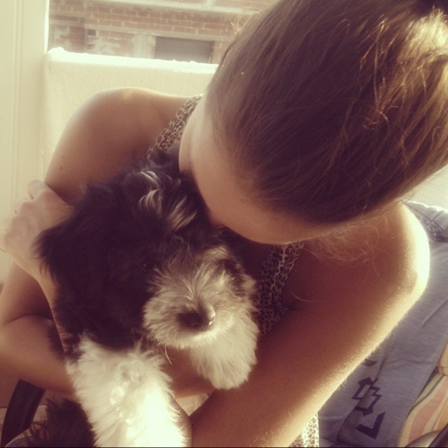 Instagram @lelazivanovic. #puppylove. Lucky dog.