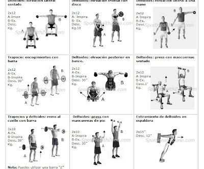 Masa muscular tabla de ejercicios for Gimnasio ua