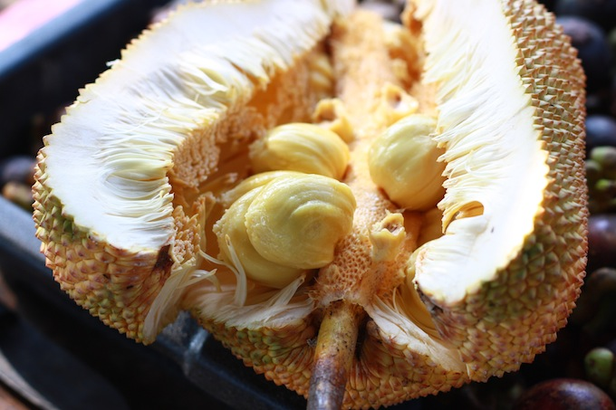 inside jackfruit