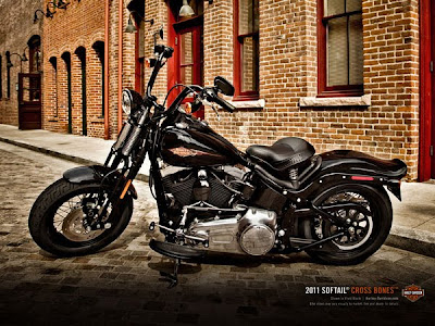 2013 Harley Davidson FLSTSB Cross Bones Softail