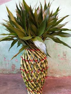 jual tanaman souvenir