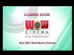 WOW Cinema and Sanskar TV Won DD Freedish Slot