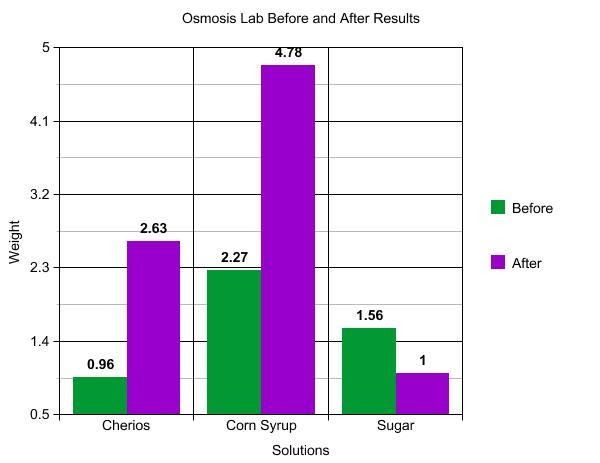 Osmosis experiment results