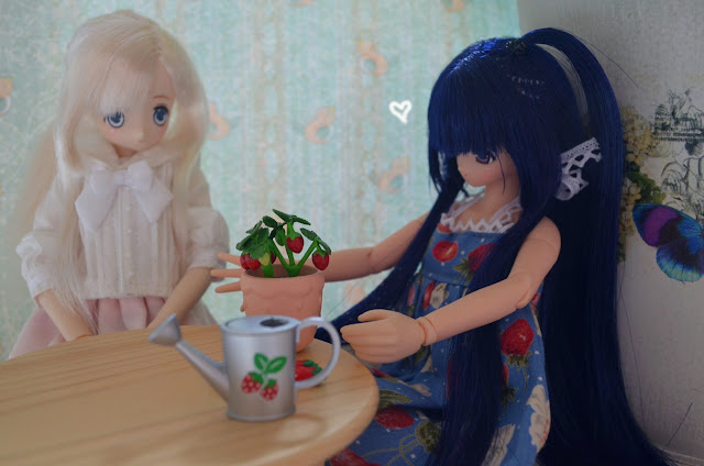 azone dolls re-ment strawberries