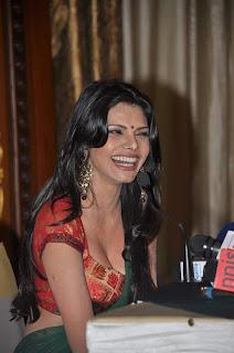 Sherlyn Chopra, Sherlyn Chopra Playboy