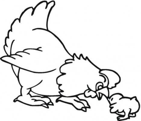 desenhos para pintar animais selvagens pata pintar animais