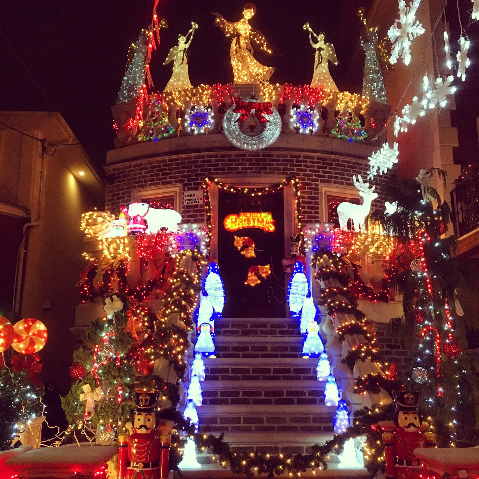 The Bright Lights Of Dyker Heights