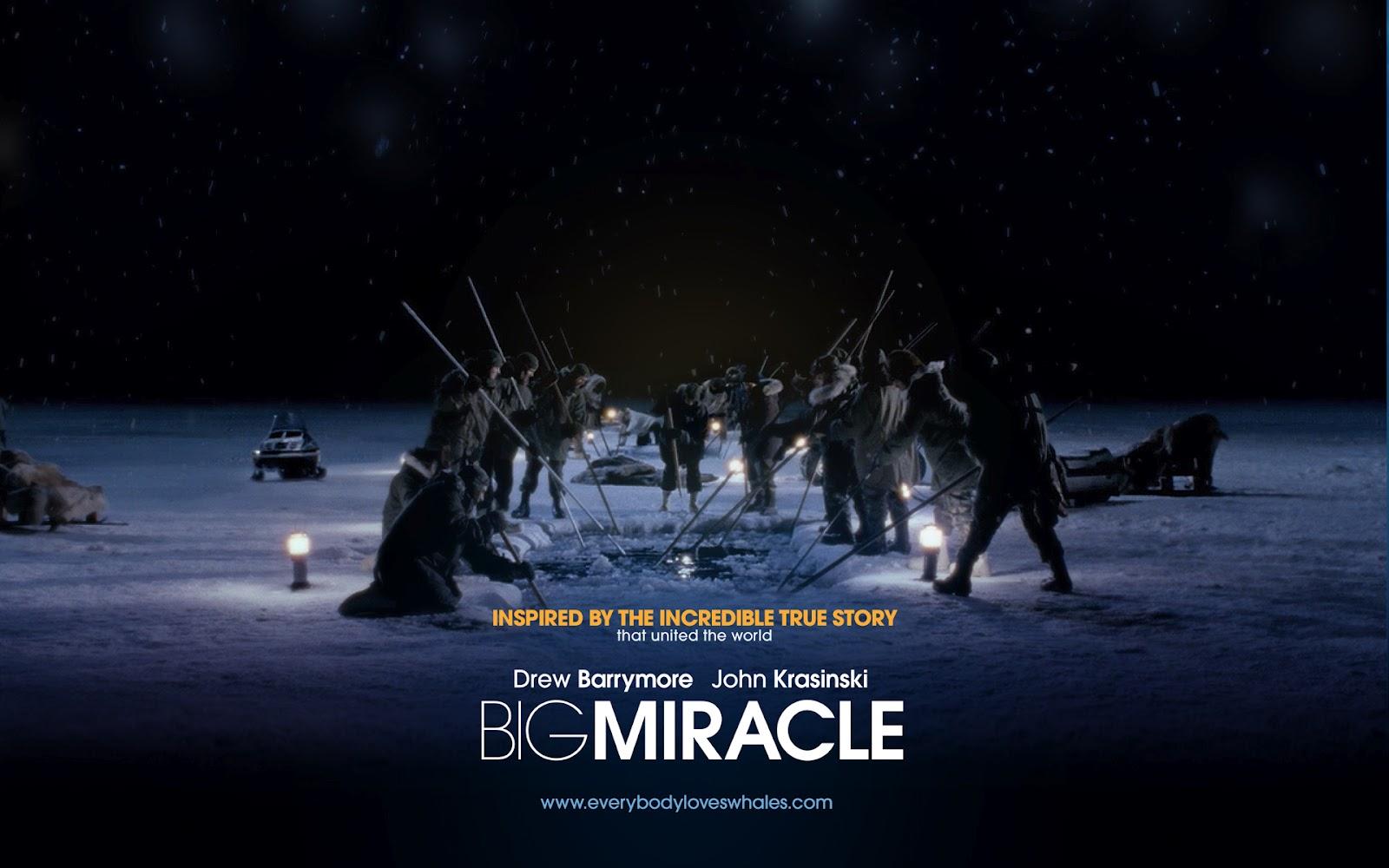 http://2.bp.blogspot.com/-_GbzJWTiGy4/T0JybZsysxI/AAAAAAAAAOM/Ou6vERLNa14/s1600/psupero+du+film+Big_Miracle_Wallpaper.jpg