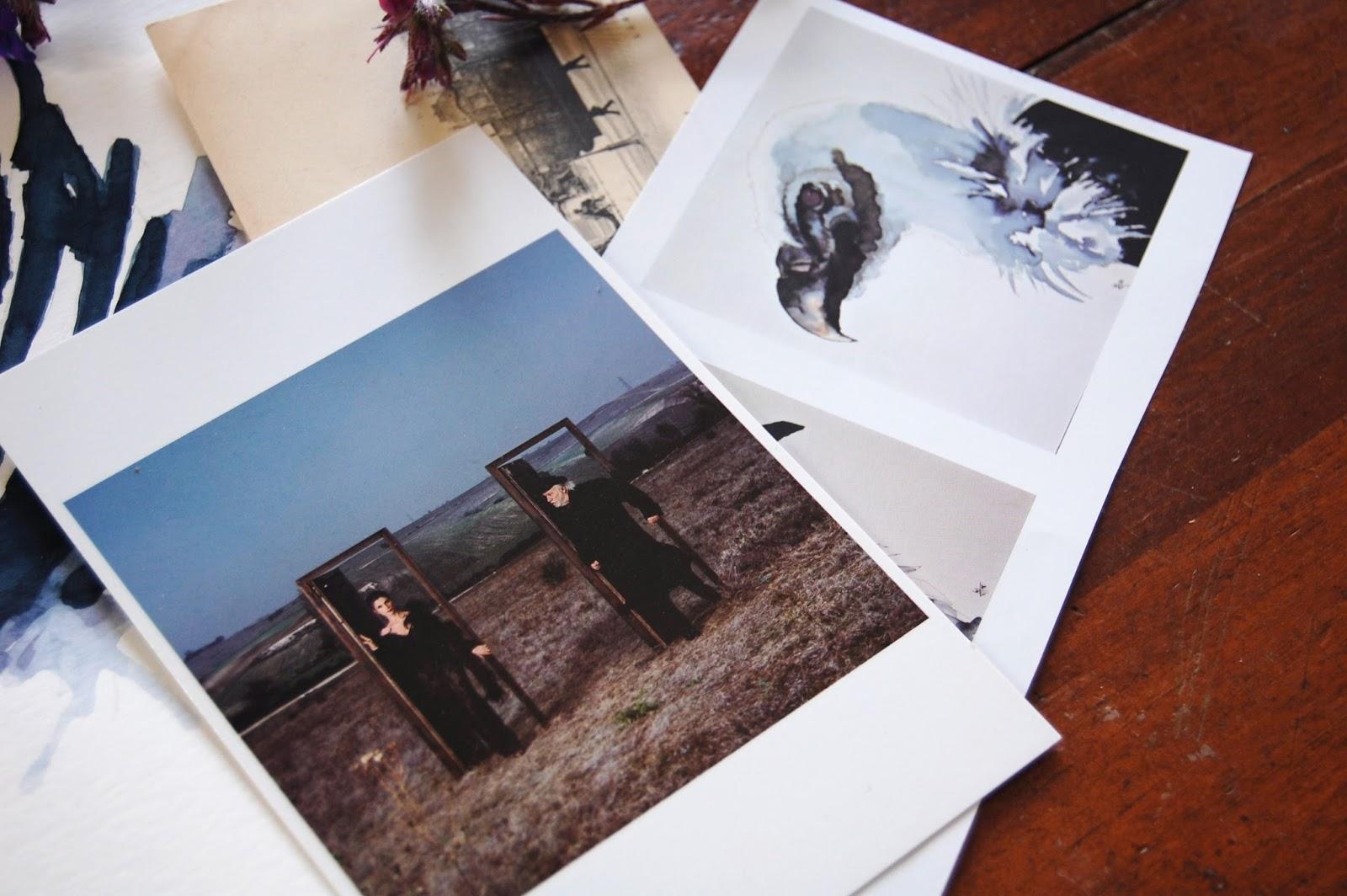 ilustracion-acuarela-cebra-animales-lorraine-blackbird