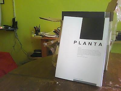 Planta (papel)