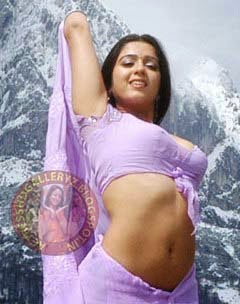 http://actresshdgalleryz.blogspot.in/2014/11/charmi-telugu-movie-actress-hot-novel.html