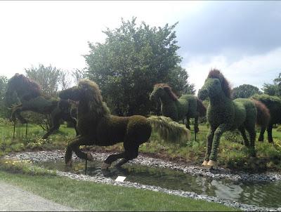 Obras de arte en arbustos caballos