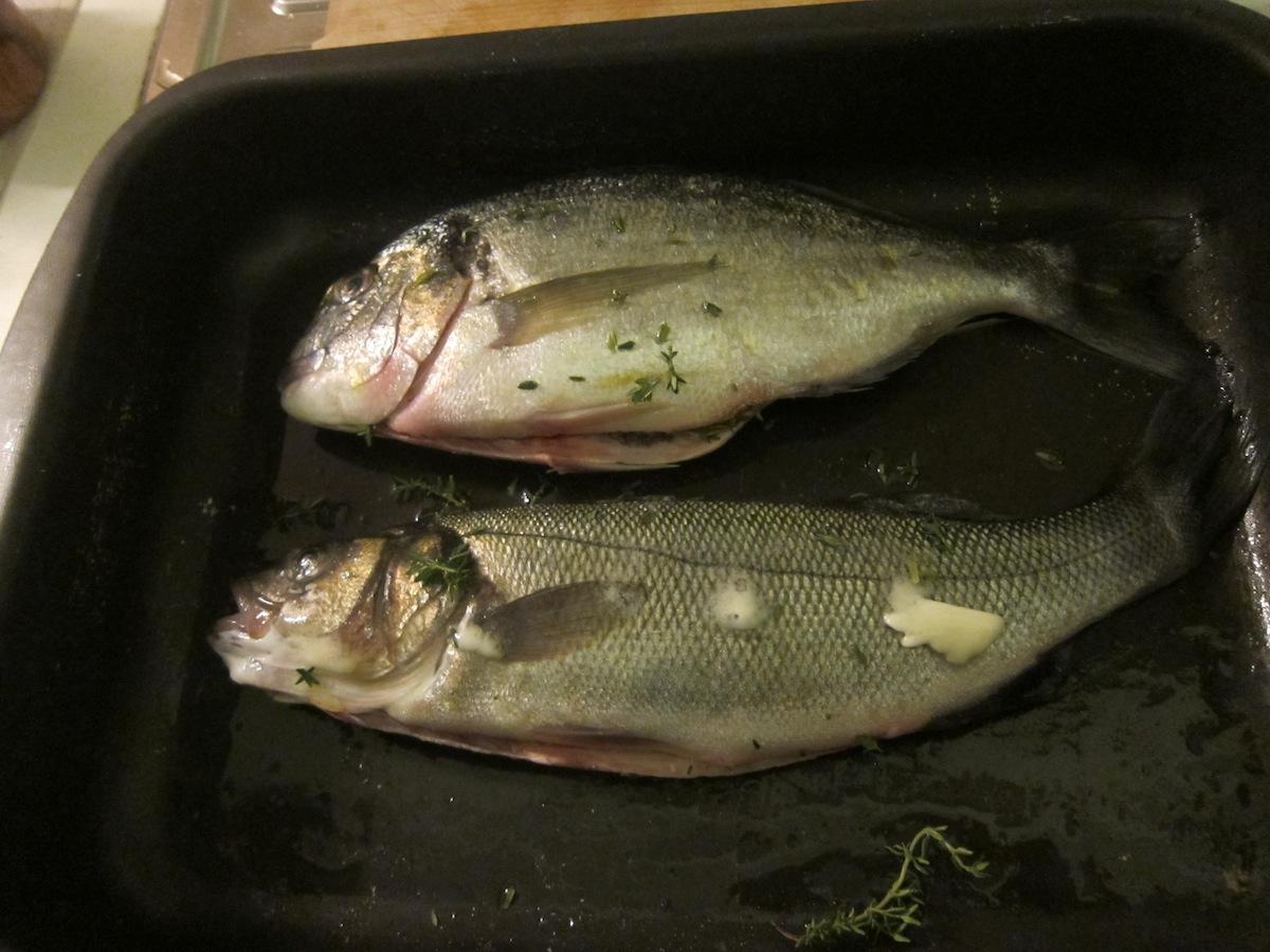 Lezioni di pesce: Orata corrige: orata vs spigola
