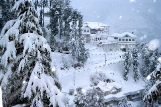 Dalhousie (Best Honeymoon Destinations In India) 3