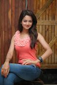 Cute Shanvi Glamorous Photos Gallery-thumbnail-9