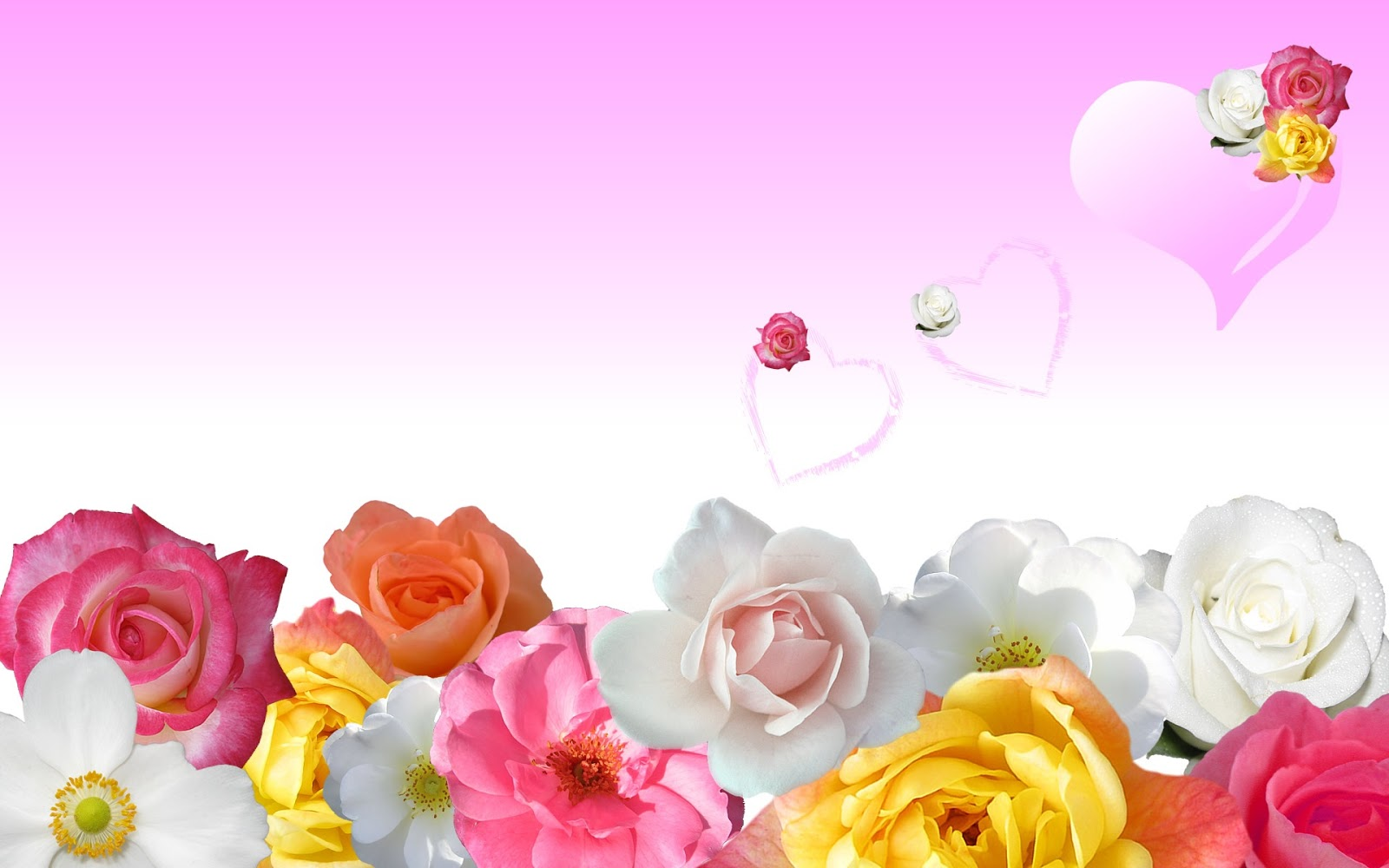 Roses Love Hearts 1920x1200 Wallpaper