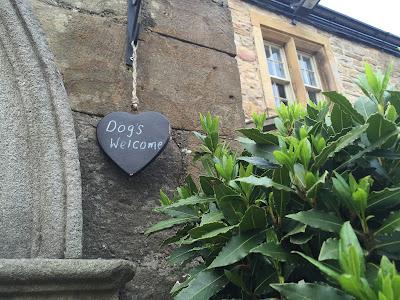 Dog friendly pub - The Blackbird Pub, Ponteland in Northumberland