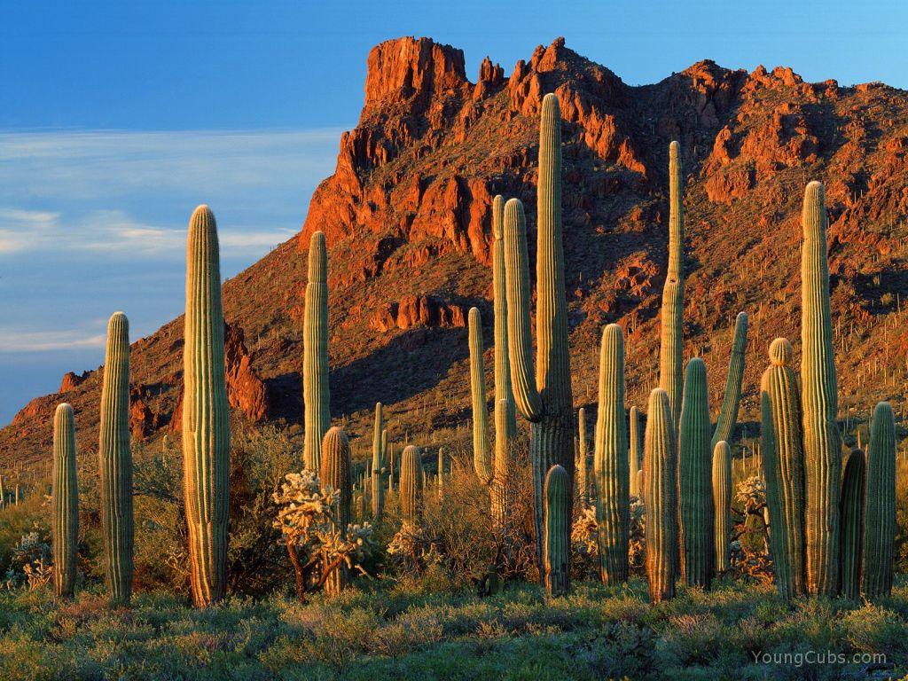 Arizona Usa Tourist Destinations