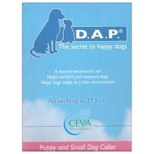 Do Calming Collars Work On Dogs