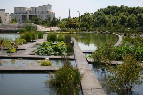 Mich le ohayon bordeaux brico balluchon les p 39 tits for Jardin botanique bordeaux
