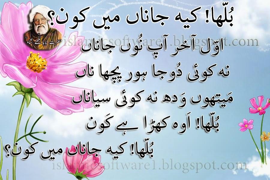 baba bulleh shah quotes 5
