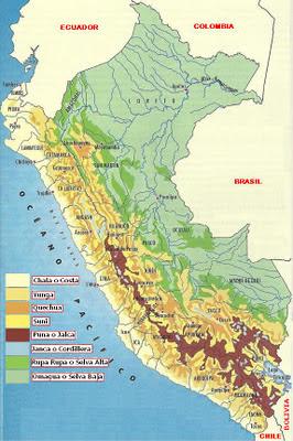 Dibujo Mapa de las 8 Regiones Nacionales del Perú