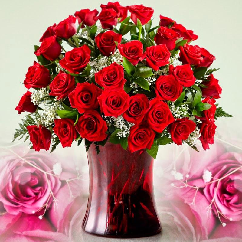 Valentines Day 2017 Wishes