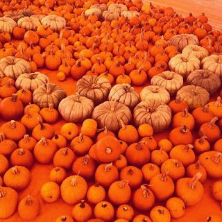 stacks of orange and white pumpkins on an orange floor
