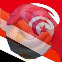 مصر وتونس ايد واحده يارب باقى الدول العربيه