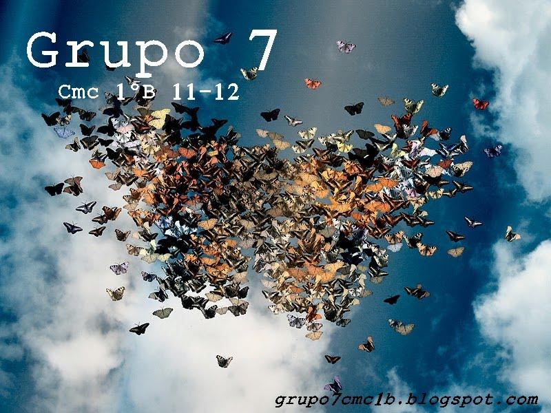 CMC 1º B 11-12 Grupo 7
