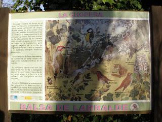 Cartel Balsa de Larralde Torre Medina Zaragoza