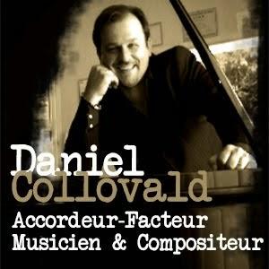 Daniel Collovald - Artiste