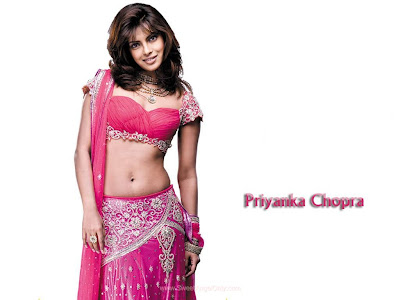 Don 2 Wallpaper With Beautiful Priyanka Chopra