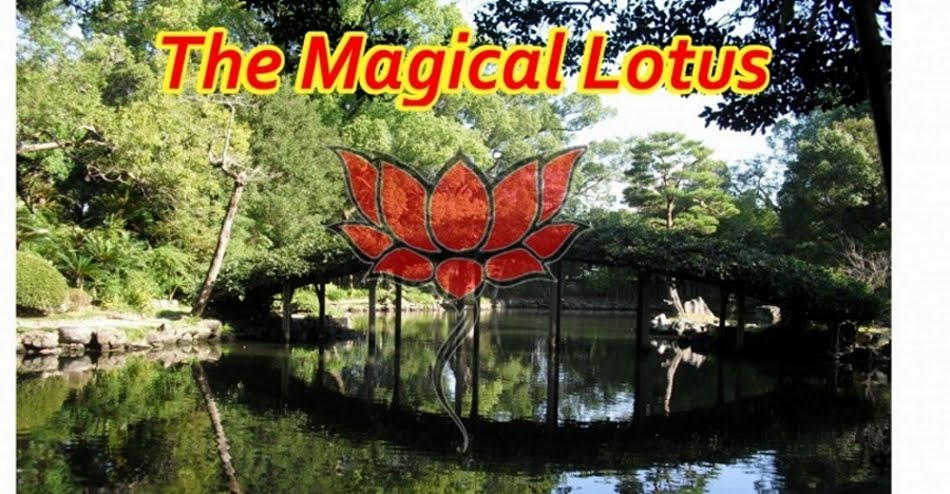 The Magical Lotus
